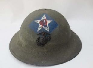 U.S. P1917