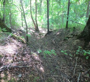 The remains of the original WWII era trenches