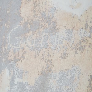 One of the many name's of German soldiers carved into the plaster of Rundāle Palace's walls