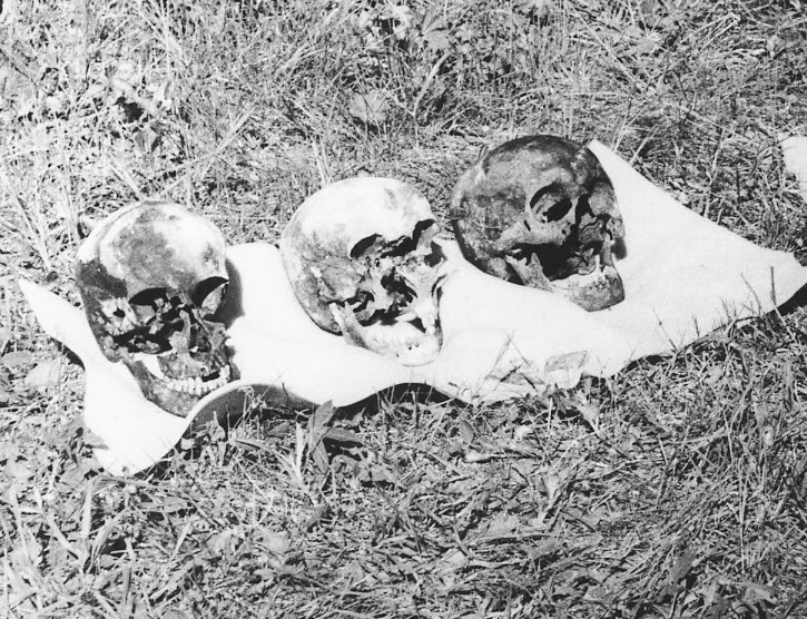The Romanov skulls. The horrific damage is evident