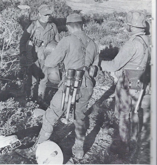 Photo taken near the end of the African campaign in Tunisia. All three men have elaberate hand rendered camoflage patterns on their helmets